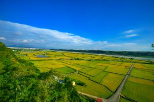 Peaceful Farm Landscapeの写真素材 [FYI02348830]