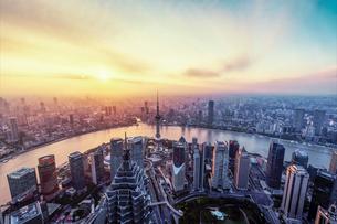 Aerial view of Shanghai China skylineの写真素材 [FYI02349032]