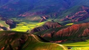 The skin of the earth,Chinaの写真素材 [FYI02349161]