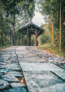 pavilion,Chinaの写真素材 [FYI02349172]