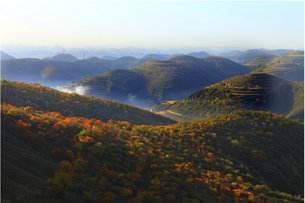Oil field autumn dayの写真素材 [FYI02349189]