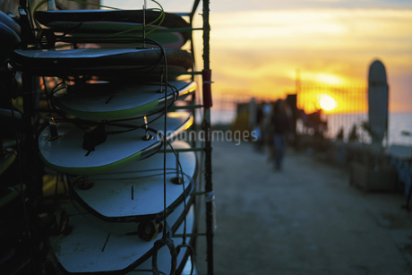 Sunset surfingの写真素材 [FYI02349196]