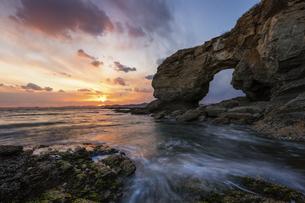 Dinosaurs explore the seaの写真素材 [FYI02349913]