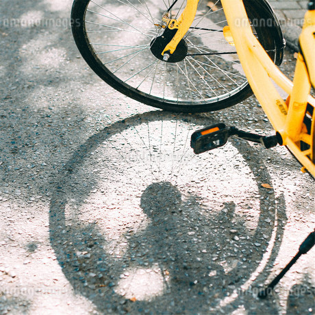 the shadow of bicycleの写真素材 [FYI02350027]