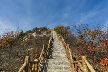 Autumn color of Xiantang Mountain,Chinaの写真素材 [FYI02350050]