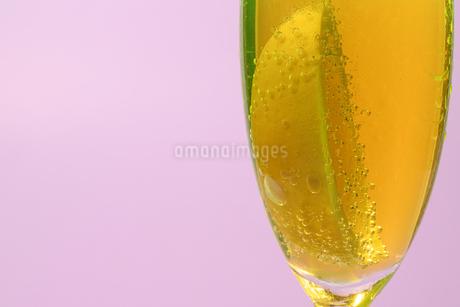 グラスの中のレモンの写真素材 [FYI02350126]