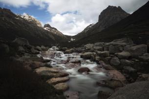Flowの写真素材 [FYI02350202]