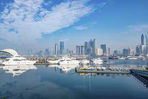Overview of the Port of Qingdao, Shandong, Chinaの写真素材 [FYI02350864]
