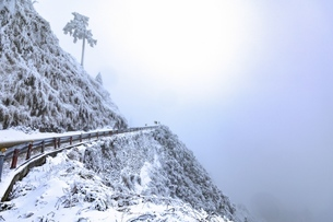 Hehuan Mountain,snow seasonの写真素材 [FYI02350903]