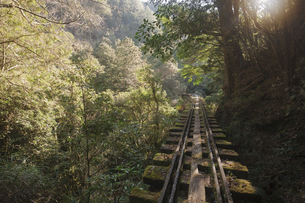 Feng A O-type vertical hiking, sleepy moon line railwayの写真素材 [FYI02351280]