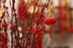Decoration of Chinese New Yearの写真素材 [FYI02351480]