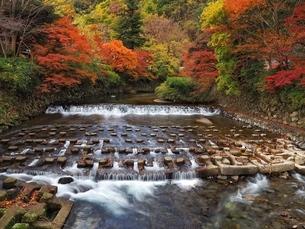 Kyoto eight seas,Kyoto, Japan,の写真素材 [FYI02351498]