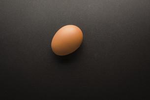 Eggの写真素材 [FYI02351571]