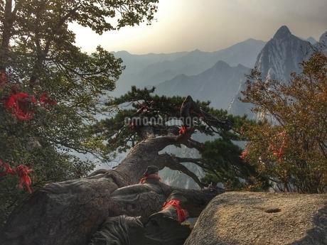 Huashan,Shanxi,Chinaの写真素材 [FYI02351696]