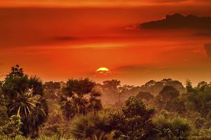 Setting sunの写真素材 [FYI02351808]