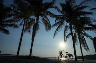 shared bike,Kaohsiung,Taiwanの写真素材 [FYI02351842]