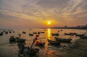 Setting sun,Chinaの写真素材 [FYI02351998]