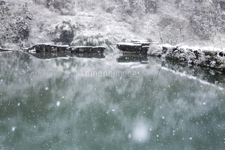 Snowscape of Mount Emei,Sichuan, Chinaの写真素材 [FYI02352040]