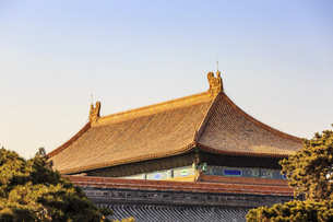 The Palace Museum,Beijing, Chinaの写真素材 [FYI02352338]