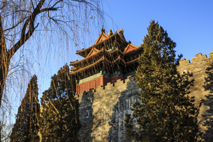 The Palace Museum,Beijing, Chinaの写真素材 [FYI02352418]