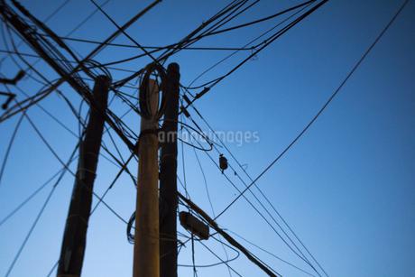 Telegraph Poleの写真素材 [FYI02352475]