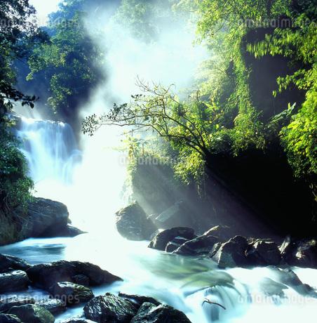 Wulai,Xinxian Waterfallの写真素材 [FYI02352573]