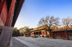 The Palace Museum,Beijing, Chinaの写真素材 [FYI02352910]