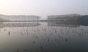 Mist covers on the lakeの写真素材 [FYI02352987]