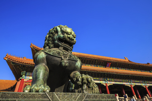 The Palace Museum,Beijing, Chinaの写真素材 [FYI02352991]
