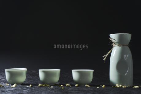 Wine set, still lifeの写真素材 [FYI02353083]