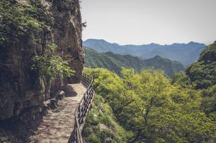Wang Wu Shan,Jiyuan, Henan, Chinaの写真素材 [FYI02353106]