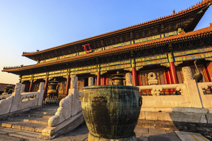 The Palace Museum,Beijing, Chinaの写真素材 [FYI02353114]