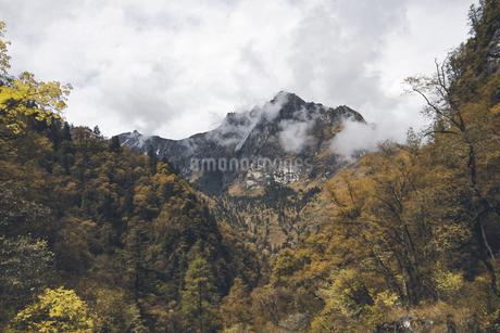 Travel, Longnan Guangegou,Chinaの写真素材 [FYI02353252]