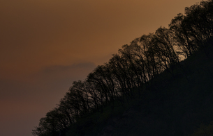 Wang Wu Shan,Jiyuan, Henan, Chinaの写真素材 [FYI02353610]