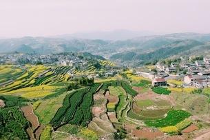 Terrace Field, Country beautyの写真素材 [FYI02353777]