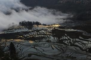 Yuanyang Terrace,Chinaの写真素材 [FYI02353812]
