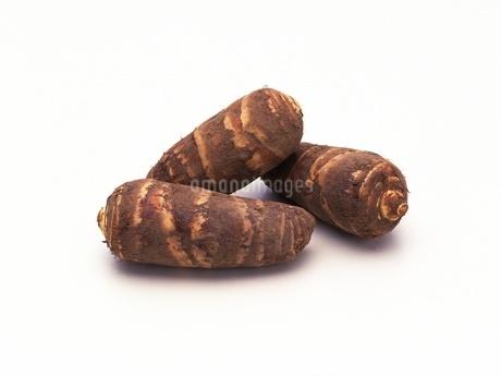 海老芋の写真素材 [FYI02353850]
