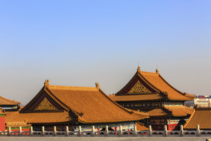 The Palace Museum,Beijing, Chinaの写真素材 [FYI02353936]