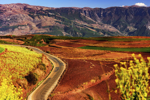Yunnan Red Land,Yunnan,Chinaの写真素材 [FYI02354010]