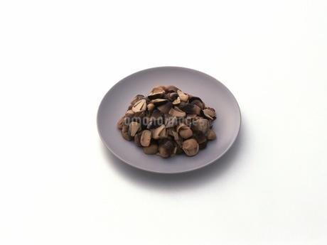 ふくろう茸の水煮の写真素材 [FYI02354029]