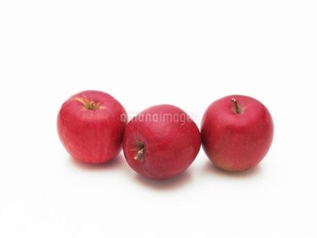 リンゴ(紅玉)の写真素材 [FYI02354081]