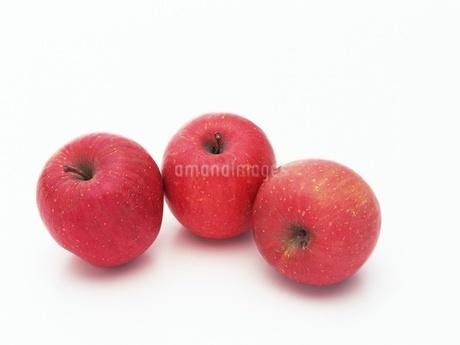 リンゴ(富士)の写真素材 [FYI02354194]