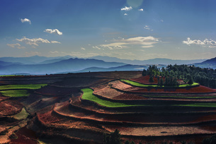 Yunnan Red Land,Yunnan,Chinaの写真素材 [FYI02354195]
