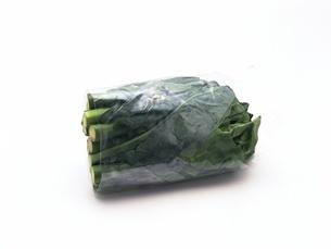 包心芥菜の写真素材 [FYI02354355]