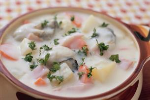 牡蠣のクリームシチューの写真素材 [FYI02354363]