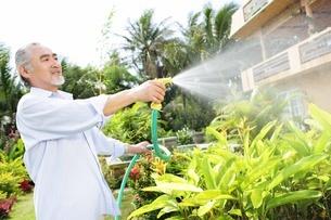 庭の水遣りをするシニア男性の写真素材 [FYI02354377]