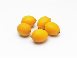 レモンの写真素材 [FYI02354385]