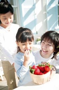 イチゴを食べる女の子の写真素材 [FYI02354518]