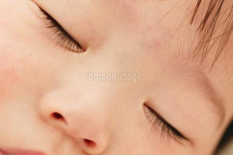 赤ちゃんの寝顔の写真素材 [FYI02354902]
