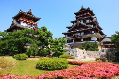 新緑の京都 伏見城天守閣の写真素材 [FYI02355226]